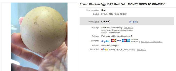 round egg